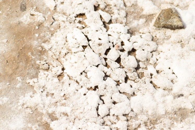 Le sel cristallise toute forme de vie sur le lac