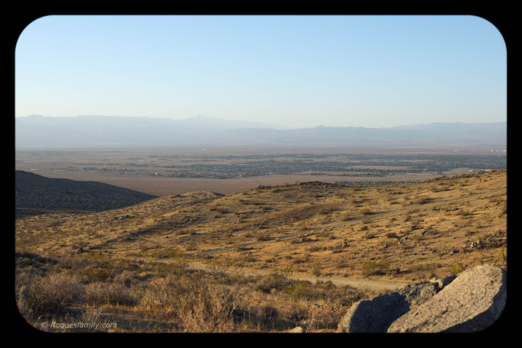 paysage 28-3.jpg